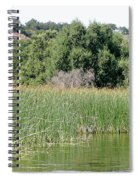 Reed Shore Spiral Notebook