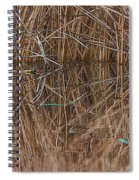 Reed Water Reflection Spiral Notebook