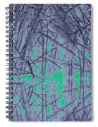 Reed Water Reflection Light Fantasy Spiral Notebook