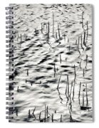 Reeds In Ripples Spiral Notebook