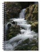 Reeds Springs Falls Spiral Notebook