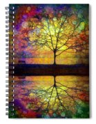 Reflected Dreams Spiral Notebook