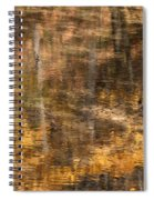 Reflected Gold Spiral Notebook