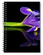 Reflected Iris Spiral Notebook