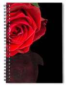 Reflected Red Rose Spiral Notebook