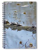 Reflecting On The Nice Spring Weather Spiral Notebook