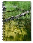 Reflecting Pond Glacier National Park Painted Spiral Notebook
