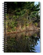 Reflecting Puddle At The Beach Spiral Notebook