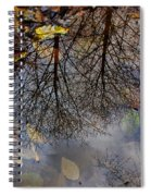 Reflection In A Puddle Spiral Notebook