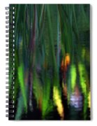 Reflection In The Pond Spiral Notebook