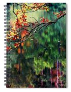 Reflection Of Autumn Spiral Notebook