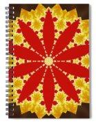 Reflection Of Fire Spiral Notebook