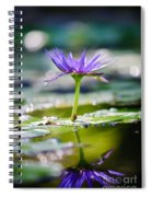 Reflection Of Life Spiral Notebook