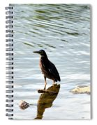 Reflection Of The Green Heron Spiral Notebook