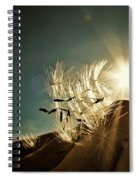 Reflection Of The Sun Spiral Notebook
