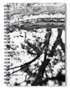 Reflection Of Time Spiral Notebook