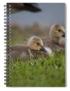 Reflection Time Spiral Notebook