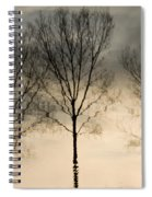 Reflections In Grey II Spiral Notebook