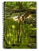 Reflections In Hells Hollow Creek Spiral Notebook