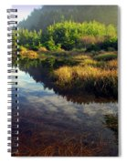 Reflections In The Pond Spiral Notebook