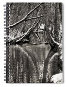 Reflections In The Snow Spiral Notebook