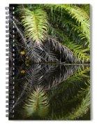 Reflections Marimbus River Brazil 2 Spiral Notebook
