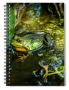 Reflections Of A Bullfrog Spiral Notebook