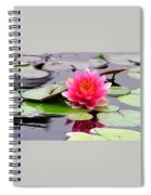Reflections Of A Pink Waterlily  Spiral Notebook