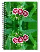 Reflections Of A Summer Bouquet Spiral Notebook