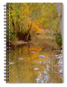 Reflections Of An Autumn Day Spiral Notebook