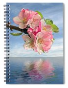 Reflections Of Spring At Apple Blossom Time Spiral Notebook