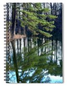Reflections Of The Pine Spiral Notebook