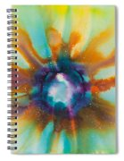 Reflections Of The Universe No. 2149 Spiral Notebook