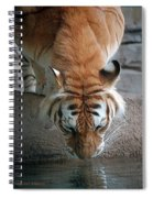 Reflections Of The Wild Spiral Notebook