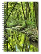 Reflections Of Tranquility Spiral Notebook