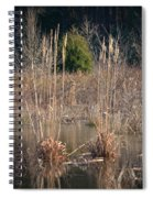 Reflections Of Winter Past 2014 Spiral Notebook