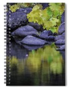 Reflections Of Yellow And Green Spiral Notebook