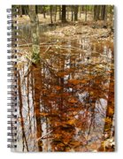 Reflections On A Forest Floor Spiral Notebook