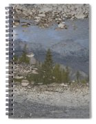 Reflections On A Mountain Stream Spiral Notebook