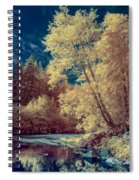 Reflections On Bull Creek Spiral Notebook