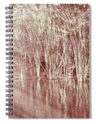 Reflections On Lake Trafford Spiral Notebook