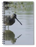 Reflections On The Pond Spiral Notebook
