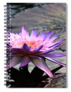 Dark Water Reflections Spiral Notebook