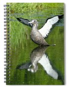 Reflective Loon Spiral Notebook