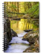 Reflective Pools Spiral Notebook
