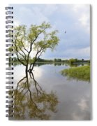 Reflective Times Spiral Notebook