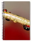Refractions Of A Red Rose 2 Spiral Notebook