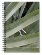 Refreshed By Rain Spiral Notebook