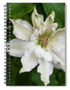Refreshed By The Rain Spiral Notebook
