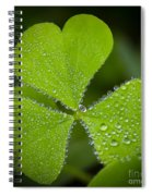 Refreshing Spiral Notebook